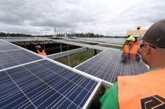 La ville de Paris, ses bâtiments municipaux et son éclairage public vont marcher à l'électricité 100% verte dès janvier 2016, a annoncé jeudi la maire de la capitale Anne Hidalgo, à trois semaines de la COP21.