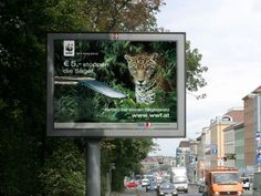WWf Kampagne Broadway Shows, Advertising Agency, Psychics, Projects