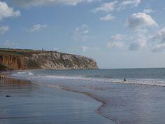 Skye in the sea on Sandown Beach