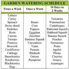 my family prepared: Garden Watering Schedule Like this. my family prepared: Garden Watering Schedule Garden Types, Water Garden, Lawn And Garden, Herbs Garden, Planting A Garden, Vegetables Garden, Herb Garden Design, Bamboo Garden, Container Gardening Vegetables