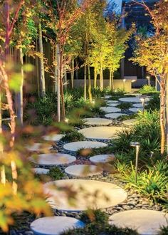 Meandering path. Paths are necessary to get from place to place in the landscape, but the designers of this wandering path used a mixture of poured-in-place concrete pavers and river rock to create a playful game of hopscotch across the yard.  Coral bark Japanese maples line the path, with their bright pink trunks glowing against the path's subtle but effective lighting.