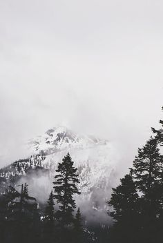 mountains and fog, beautiful outdoors