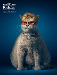 "1   See A Feline Richard Branson In The ""Fat Cats"" Campaign   Co.Create   creativity + culture + commerce"