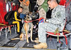 U.S. Army 1st Sgt. Chris Lalonde, right, with his military working dog, Sgt. Maj. Fosco, sit aboard a CH-47 Chinook helicopter just prior to taking off for the historical military's first tandem airborne jump on Gammon Parade Field, on Fort Leonard Wood, Mo., Sept. 18, 2009. Lalonde is assigned to Company D, 701st Military Police Battalion. U.S. Army photo by Kevin Carlile