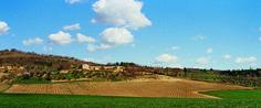 Az. Agr e Cantina Carini in Umbria, non distante da il #Trasimeno