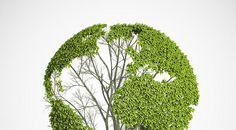 ¿Saben cuál es su impacto en el planeta mediante su huella ecológica? Lee más http://biobaby-bioblog.blogspot.com.ar/2013/02/conoce-tu-huella-ecologica.html