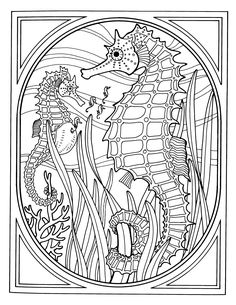intricate coloring pages | Coreyshead - Looking at the World 1 Pixel at a Time Printable Coloring Pages, Ocean Coloring Pages, Coloring Pages For Grown Ups, Animal Coloring Pages, Coloring Pages For Adults, Coloring Sheets, Adult Coloring Pages, Coloring Books, Seahorses