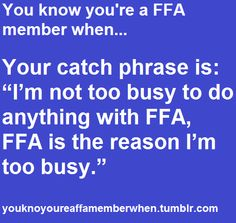 """Your catch phrase is: """"I'm not too busy to do anything with FFA, FFA is the reason I'm too busy"""
