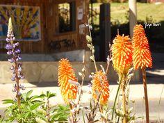 Bariloche, Argentina, Verano 2013