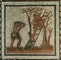 "11-01-03/48 ""Harvesting olives"". Mosaic (1st half of 3rd century) BDP"