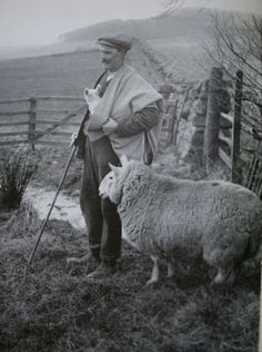 """The Maud — the traditional shepherd's plaid that's woven and worn in the Scottish Borders and used for its original function protecting the shepherd and his lambs from the elements. The word maud comes from the Gaelic word """"blanket"""" and the Scottish word derives from the word maldy, a coarsely woven grey colored cloth, common to the region.The pattern most associated with the maud, is the Shepherd's Check, also known as the Border tartan, the Falkirk tartan, or the Northumberland tartan."""