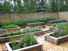 Now this is cool! Perfect for Washington gardening when you don't want to walk around on muddy wet grounds.