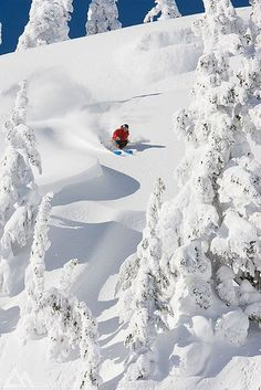 Would love to someday ski in a place like this!