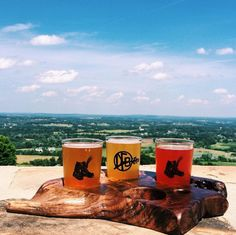 Get out today & celebrate #NationalBeerDay with your favorite #VABeer  (bonus points if it comes with a killer view, like @dirtfarmbrewing in Bluemont). #vafoodie #dirtfarmbrewing : Instagram user @steffernweh