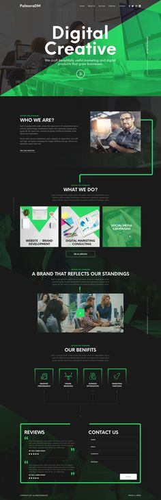 Homepage design for a PalmeraDM | 99designs