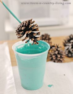 We could make gold pine cones!