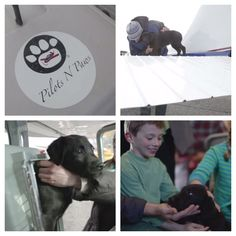 Cute puppy alert! Pilots N Paws uses volunteer pilots to fly rescue pups to their new homes. Heartwarming!