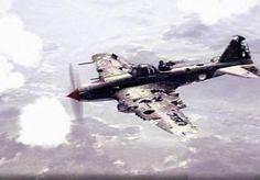 Damaged Il-2 still flying!