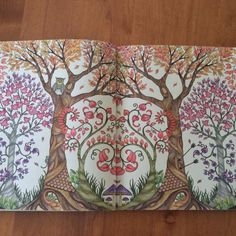 Johanna Basford | Picture by Luci | Colouring Gallery