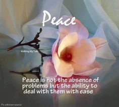 34 Delightful Quotes promoting peacefulness images | Thinking