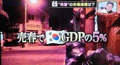 日本だけ報道されない事実 | ひふみ塾 世回りブログ Broadway Shows, Korea, Korean