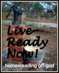 Live Ready Now! ~ A family homesteading on 20 acres in Florida, with goats, chickens, rabbits, a cow, garden, etc.