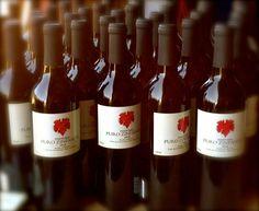 ¡'Biba' México! The Zeal Behind Mexico's Pasión Biba  The first in a series of articles about el Valle de Guadalupe, Mexico's wine producing valley. ¡Salud!