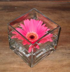 Centerpiece square vase with floating gerber