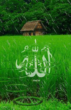 Allah Wallpaper, Islamic Quotes Wallpaper, Islamic Love Quotes, Nature Wallpaper, Beautiful Landscape Wallpaper, Beautiful Flowers Wallpapers, Beautiful Landscapes, Islamic Images, Islamic Videos