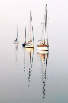 007 Sail a Boat Before I Let Go… Pinterest Boating