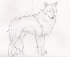 Wolf drawings wolf sketch wolf sketch by wolf drawing step by step pencil Wolf Head Drawing, Wolf Drawing Easy, Easy Drawing Steps, Step By Step Drawing, Easy Drawings Sketches, Animal Sketches, Animal Drawings, Wolf Drawings, Drawing Ideas
