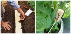 Cateva trucuri simple pe care le puteti folosi atunci cand veti incepe munca la gradina de legume si zarzavaturi.