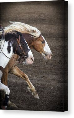 """""""The Outlaw And The Law"""" Canvas Print by Caitlyn Grasso. #horses #western"""