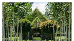 Is this living, green church NZ's coolest wedding venue?