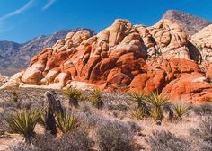 Red Rock Canyon Park near Las Vegas, Nevada