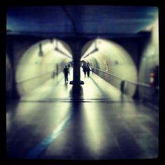 Photo by lnasci • Instagram