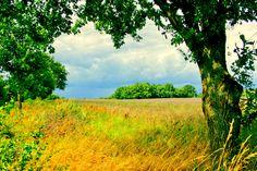 Wetterwechsel in Oberhavel - Landschaft in Oberhavel mit aufkommender…