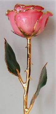 24Kt Pink Gold Trimmed Rose from Arttowngifts.com.