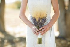 [ lavender and wheat ]