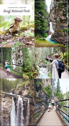 Johnston Canyon - 1 of 5 beautiful hikes to explore as a family in Banff any time of  year - winter, spring, summer or fall.