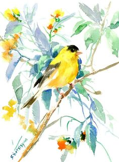 Buy American Goldfinch, Watercolour by Suren Nersisyan on Artfinder. Discover thousands of other original paintings, prints, sculptures and photography from independent artists.