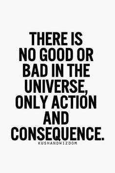 there is no good or bad in the universe, only action and consequence