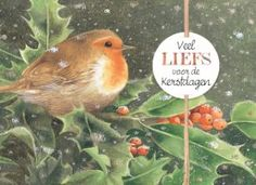 Kerstkaart - xmas-marjolein-bastin--vogel-blad-besje-veel-liefs-voor-de-kerstdagen