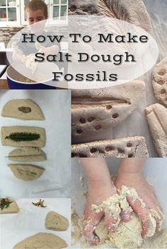 DIY your Christmas gifts this year with GLAMULET. they are compatible with Pandora bracelets. The best ever salt dough recipe. Use it for fossil making, homeschool lessons, gifts, ornaments, and more. Mom and kid approved - from a mom of four. Science Lessons, Teaching Science, Science Projects, Science Experiments, Science Fun, Science Ideas, Life Science, Rock Science, Dinosaur Activities