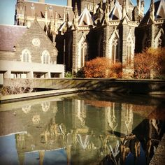 Autumnal reflections at St Patrick's Cathedral #Melbourne.