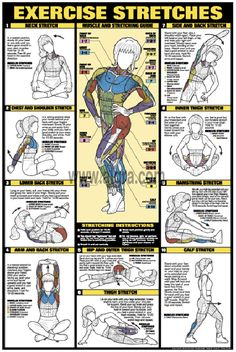 Exercise Stretches Poster