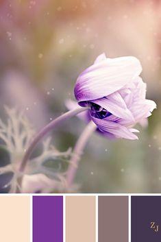 ZJ Colour Palette 459 #colourpalette #colourinspiration
