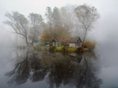 Near the Duna river, Hungary. Photo of the Day - Best Photos of 2015 - Photo Gallery - National Geographic
