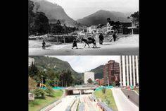 Comparación de la calle 26 en 1925 y la calle 26 en la actualidad, con vista al oriente. Japan Spring, Spring Time, Dolores Park, Landscape, City, Photography, Travel, Twitter, Flowers