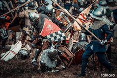 Battaglia di Castagnaro ed. 2016
